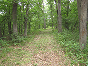 Southern Iowa, 8+ Acres with Boat Slip!